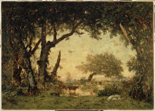Th odore rousseau sortie de for t fontainebleau soleil couchant images d art - Palpitations le soir au coucher ...